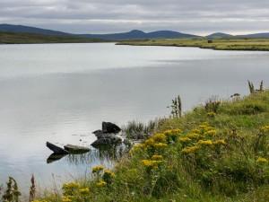 1024 Loch Bhrusda