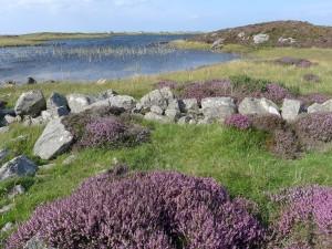 1024 Loch Druidibeg Nature Reserve